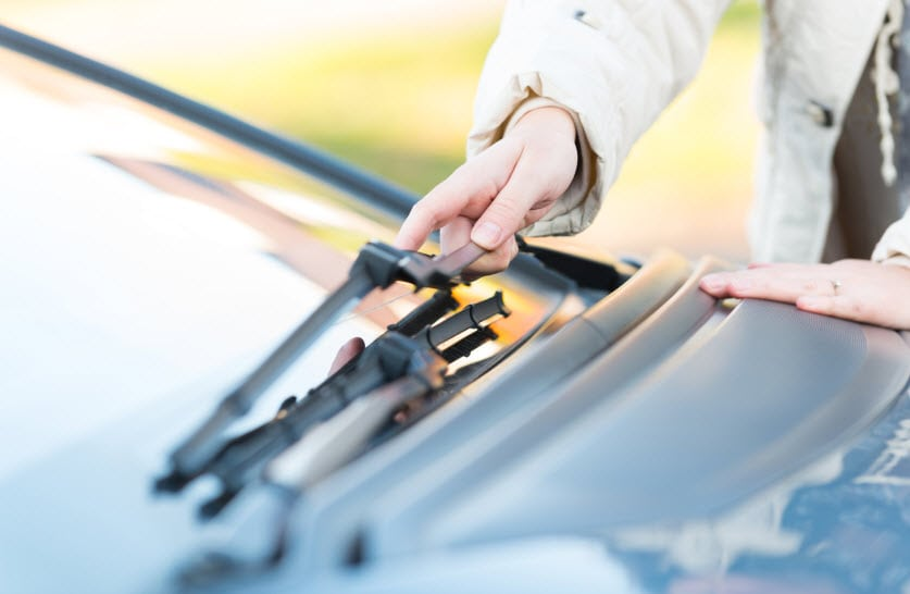 Windshield Washer Fluid the Latest Health Risk