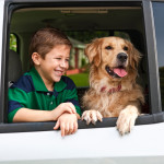 How to Keep Your Kids and Pets Car Safe This Summer