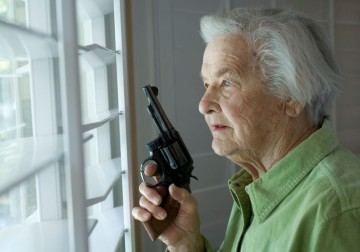 Homeowner Gun