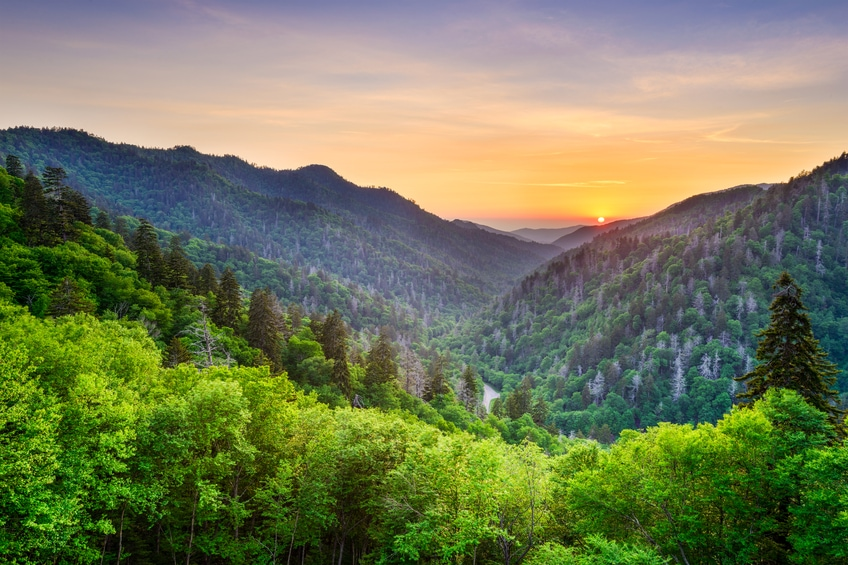 16 National Parks to Visit This Summer!