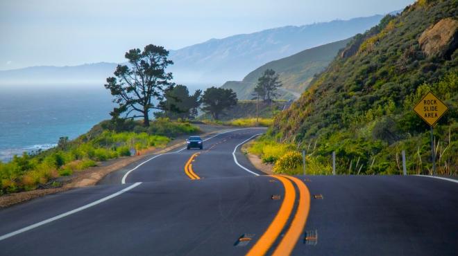 Cat driving down highway in California